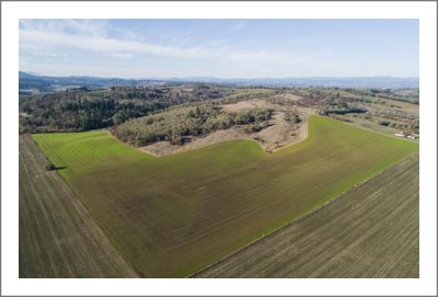 Oregon Vineyard Land For Sale - Vineyard Potential