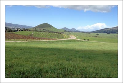 Edna Valley Land For Sale - Vineyard Potential - San Luis Obispo Land For Sale