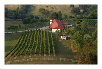 Wineries For Sale - Tennessee Winery & Vineyard For Sale - Corey Ippolito Winery