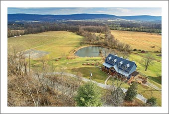 Virginia Wine Country Home & Vineyard For Sale - Winery / Brewery Potential - Real Estate
