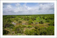 Texas Ranch For Sale w/ Mineral Rights and Wind Leases - Cattle / Vineyard Potential