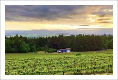 Oregon Winery For Sale - Organic Winery w/ Boutique Vineyard & Home For Sale