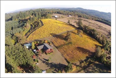 Oregon Vineyard For Sale w/ Custom Home -  Lonesome Rock Ranch - Oregon Wine Country Real Estate