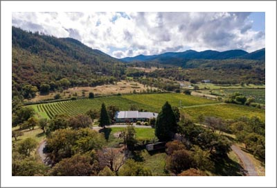 Oregon Vineyard For Sale - Talent, Oregon Home For Sale - Jackson County Farm For Sale - Oregon Real Estate