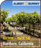 Winery and Vineyard Auction - Sierra Foothills Vineyard and Winery For Sale
