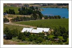 New Zealand Vineyard For Sale - Lifestyle Property -  Bannockburn, NZ - Bald Hills Vineyard