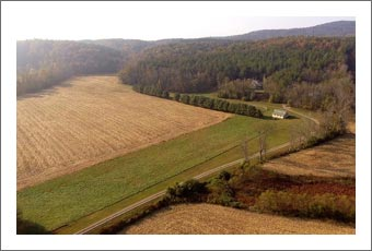 Vineyard Potential Land - North Carolina Wine Country Home w/ River and Plantable Land - Surry County Real Estate