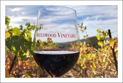 Northern California Winery and Vineyard For Sale - Fair Play AVA Winery For Sale