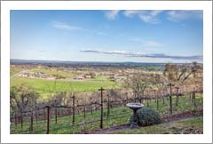 Paso Robles Bed and Breakfast w/ Boutique Vineyard For Sale