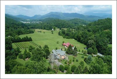 Georgia Winery & Vineyard For Sale - Large Luxury Home with Commercial Kitchen - Georgia Wine Country Real Estate
