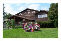 Finger Lakes, NY - Vineyard, Winery, and Restaurant For Sale - Wine Real Estate