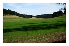 Vineyard Land For Sale -  514 Acres - Westside Paso Robles AVA Premium Land For Sale - Wine Country