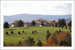 Luxury Villa Style Home and Vineyard For Sale - Virginia Luxury Real Estate