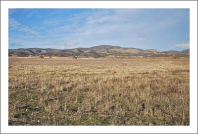 Monterey County Land For Sale - Vineyard Potential - San Antonio Valley AVA Land - 160 Acres