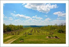 Ohio Winery and Vineyard For Sale - Ohio Wine Country Real Estate