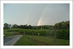 Virginia Winery, Vineyard,and Land For Sale - Virginia Wine Country Real Estate - Confidential Winery Sale