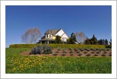 Washington Vineyard and Luxury Victorian Home For Sale - Winery & Event Center Potential - Vancouver, WA