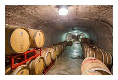 Virginia Winery, Vineyard,and Land For Sale - Virginia Wine Country Real Estate - Stone Mountain Vineyards