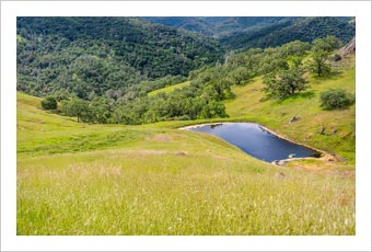 Paso Robles Land For Sale - Westside Ranch For Sale - Paso Robles, CA
