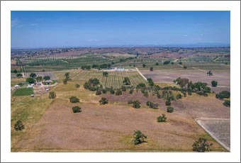 Paso Robles Hay & Alfalfa Farm For Sale - Water Rights - Vineyard Potential