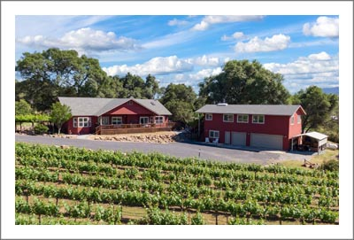 Sierra Foothills AVA Vineyard and Home For Sale - Calaveras County Real Estate - Land For Sale