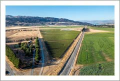 New Zealand Vineyard For Sale - Winery Site & Custom Home - Vineyards For Sale - Central Otago, NZ