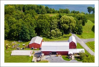 Seneca Lake Winery and Vineyard For Sale - Finger Lakes Wine Country Real Estate