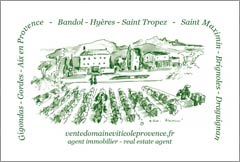 French Vineyard For Sale - Provence, France