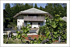 Sutter Creek Wine Country Home and Vineyard For Sale - Amador County Wine Country Real Estate
