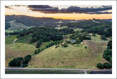 Vineyard For Sale - Paso Robles AVA 218 Acres w/ 34 Acre Vineyard For Sale - Templeton Real Estate