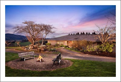 Oregon Winery & Vineyard For Sale - Willamette Valley Vineyard and Winery For Sale