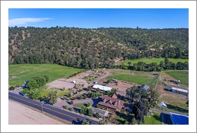 Oregon Craftsman Style Home For Sale w/ Tillable Farmland and Woods - Vineyard Potential Real Estate