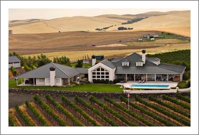 Washington Vineyard For Sale - Contemporary Home w/ 4 Suite Inn - Bed and Breakfast