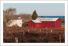 Winery For Sale - Chautauqua County Winery, Vineyard and Home For Sale - Wine Real Estate