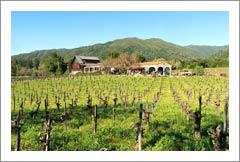 Mendocino County Winery and Vineyard For Sale - Mendocino Wine Country Real Estate