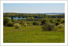 Vineyard Land For Sale - Traverse City, Michigan - Winery Potential Real Estate