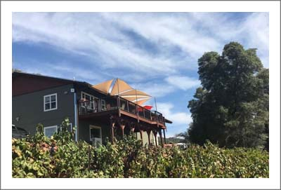 Winery For Sale - Sierra Foothills Winery & Vineyard For Sale - El Dorado County Real Estate