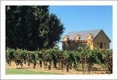 Lodi Winery and Vineyard For Sale -  San Joaquin Valley Wine Country