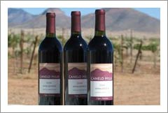 Wineries For Sale - Arizona Turn-Key Winery, Vineyard and Home For Sale - Arizona Wine Country