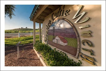 Temecula Valley Winery & Vineyard For Sale -