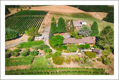 Willamette Valley Winery For Sale - Chehalem Mountain AVA Real Estate - Winery, Vineyard, Home & Horse Property -  	Washington County, Oregon