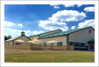 Finger Lakes Winery For Sale - Seneca Lake - Winery, Tasting Room and Land For Sale - Schuyler County Real Estate