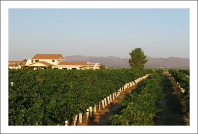 Arizona Winery For Sale - Arizona Winery and Vineyard For Sale - Wine Country Real Estate