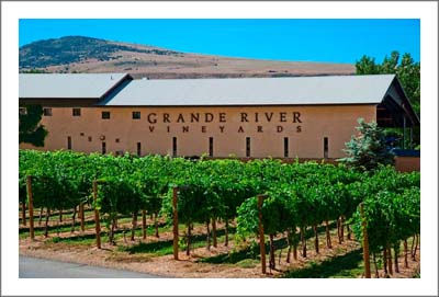 Colorado Winery For Sale - Winery, Tasting Room and Vineyard For Sale - Palisade, Colorado Wine Country Real Estate - Grand Valley AVA