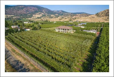 British Columbia Orchard For Sale - Apple Orchard For Sale - Cherry Orchard For Sale - Okanagan Valley Wine Real Estate