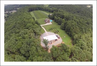 Vineyard For Sale - Tennessee Vineyard & Home For Sale - Wine Country Real Estate