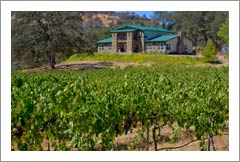 Vineyards For Sale - Sierra Foothills Large Custom Lodge Style Home For Sale - Mariposa Wine Country Real Estate