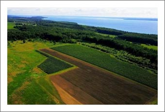 Michigan Vineyard For Sale - Located on the Old Mission Peninsula - Michigan Wine Country Real Estate For Sale