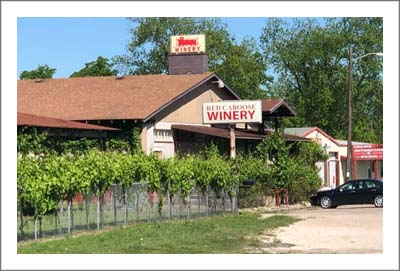 Bosque County Winery, Vineyard and Event Center For Sale - 120 Acres Fenced Ranch Land