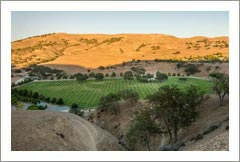 Monterey County Ranch For Sale - Vineyard Land - Cattle Ranch / Hay & Alfalfa Farm For Sale